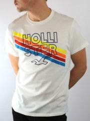 Hollister Slim Seagull Logo Print T-Shirt | Clothing Depot